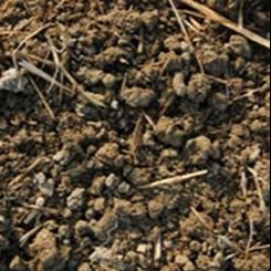 Crumbly structured soil