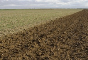 soil and tractor tyres