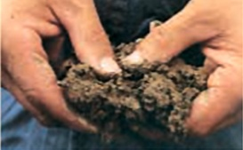 Wet and sticky soil