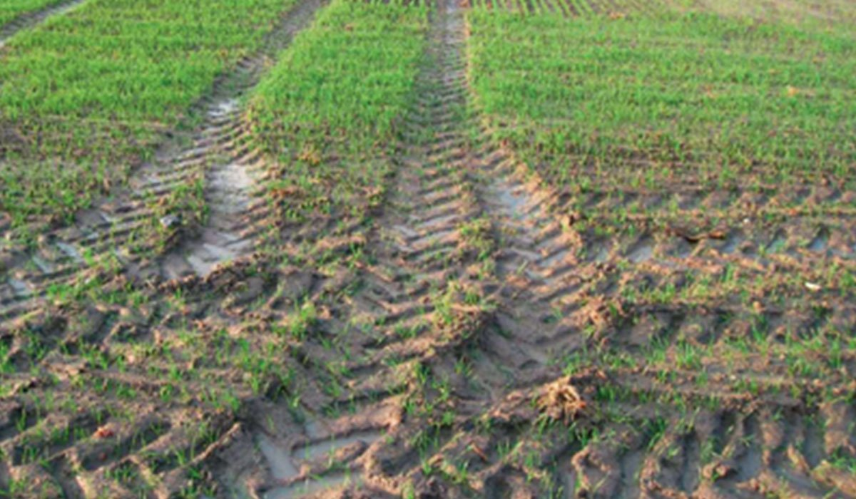 which agricultural tyre against ruts